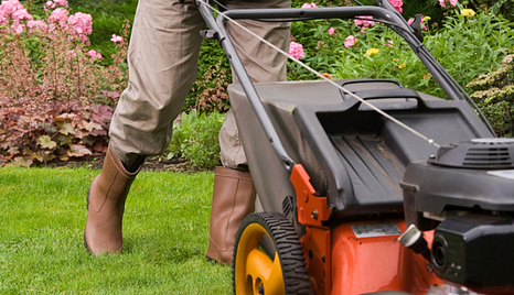 Avoiding Most Common Lawn Care Mistakes