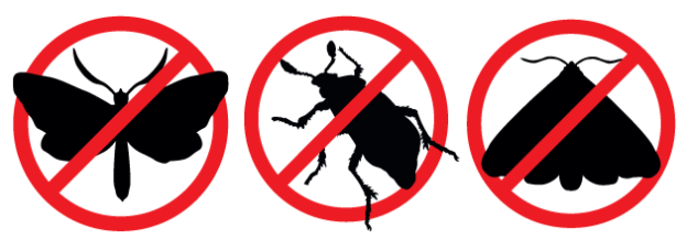 Pantry Pests In Utah