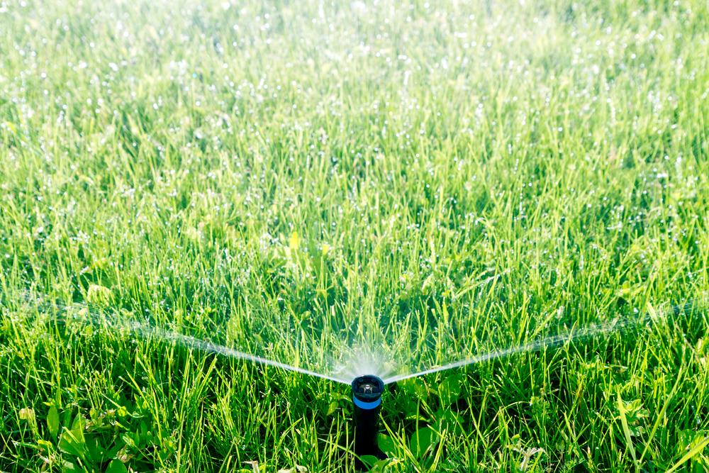Lawn Care In Utah