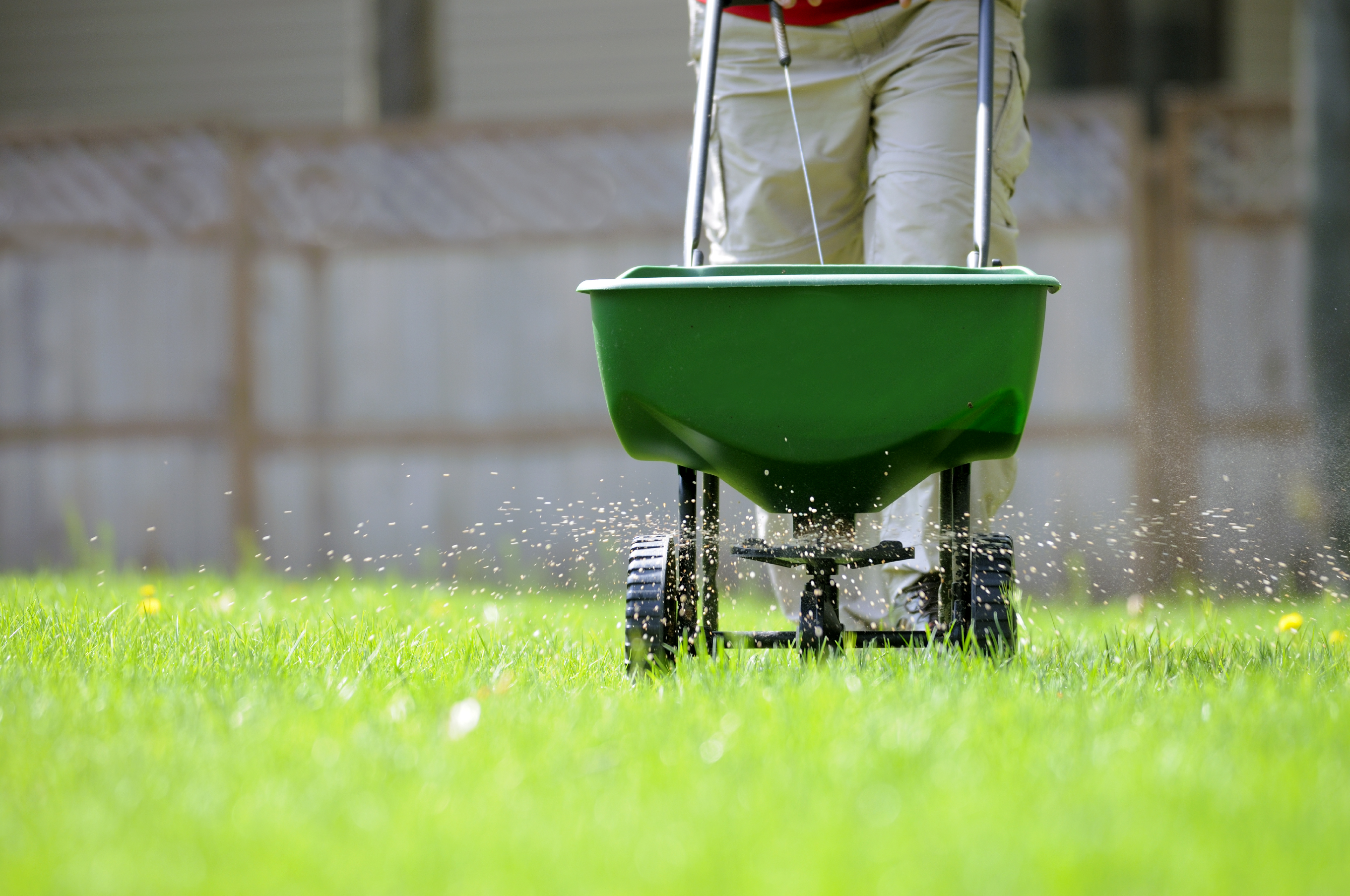 Fall Lawn Fertilization In Provo Utah