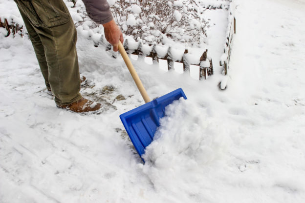 Some Tips to Avoid Winter Landscape Damage