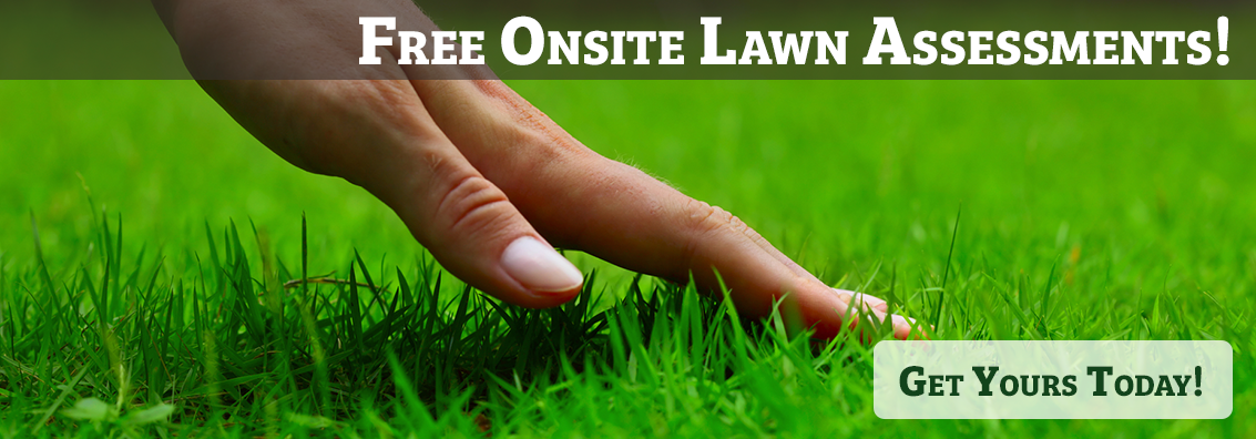 Free Onsite Lawn Care Assessments in Provo Utah County