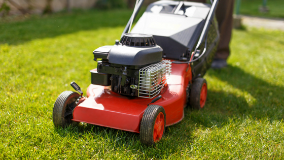 Biggest Lawn Care Mistakes You Need To Know