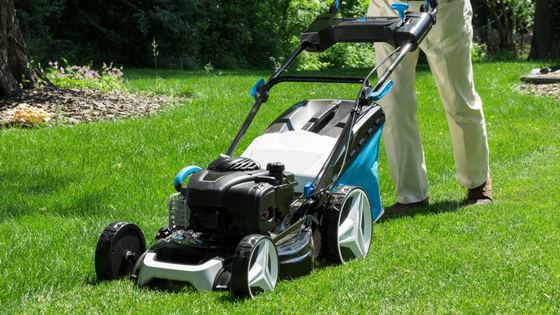 Consumer Reports - Top 3 Best Lawn Mowers