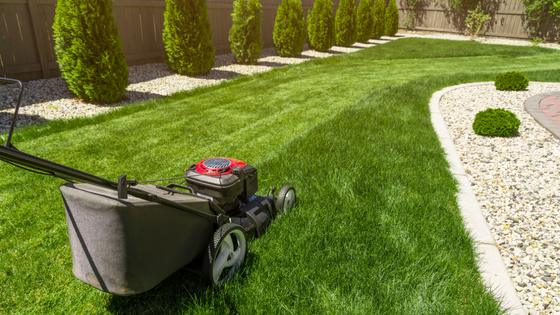 Top 3 Lawn Care Equipment Every Homeowner Should Have
