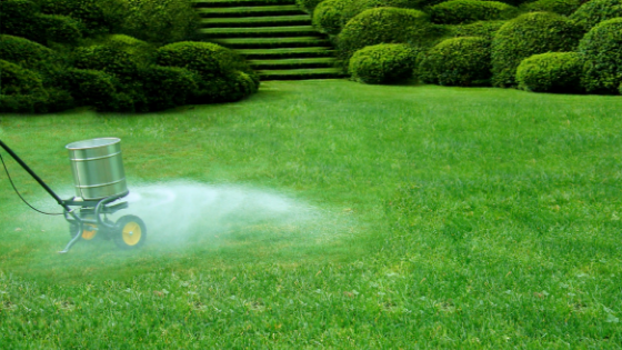 Why Lawn Fertilization is Important?
