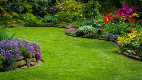 How To Keep Your Grass Greener in the Summer