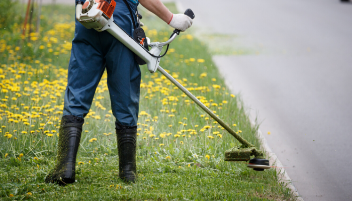 Trimmers and Edgers: Are They Worth the Investment?