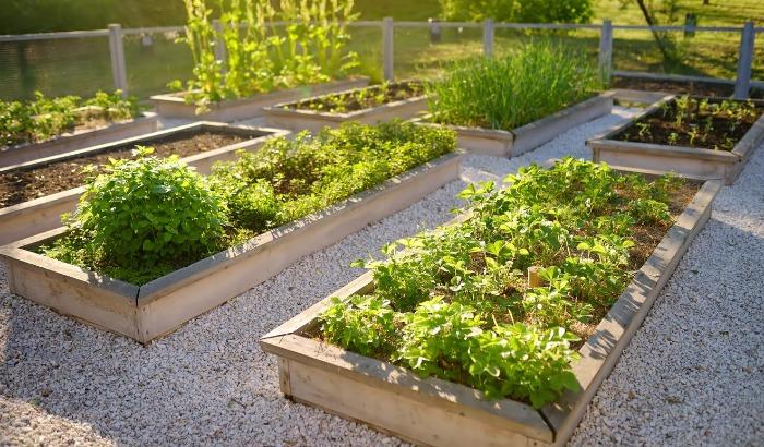 5 Tips For An All-Season Garden