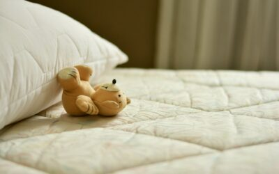 5 Practical Ways to Get Rid of Bed Bugs Naturally