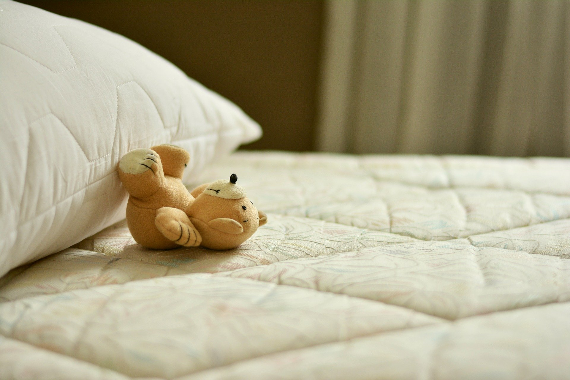 Effective ways to get rid of bed bugs naturally
